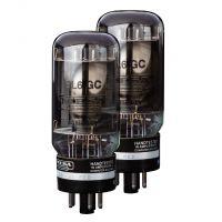 Mesa Boogie 6L6 STR441 Duet Matched Pair Power Amp Valves