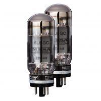 Mesa Boogie 6L6 STR-445 Duet Power Valves