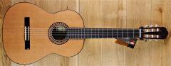 Raimundo 136 Cedar